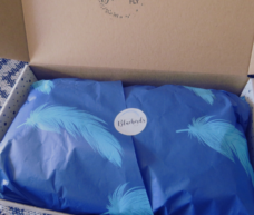 Where Bluebirds Fly Care Package Box With Blue Tissue Printed With Light Blue Feathers